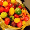 彩トマトとモッツァレラのサラダ