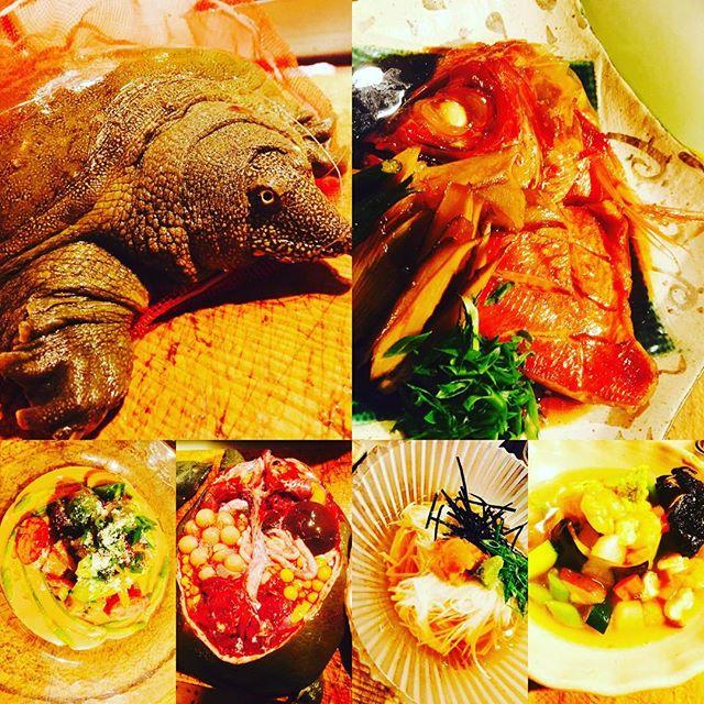 ブラッスリーピガール&六畳間️天然のすっぽん入荷️パワーつけたい方は是非️^_^アスパラソバージュも残りわずか️金目鯛は煮付けで️その他盛り沢山で間もなくオープンでーす️^_^#フレンチ #和食 #ワイン #野菜料理 #ハンバーグ#すっぽん#スッポン#日本酒#女子会