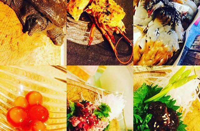 ブラッスリーピガール&六畳間️今日も間もなくオープンでーす️#ブラッスリーピガール #横浜#ジビエ料理 #パスタ #女子会 #スッポン#日本酒 #和食#ワイン#野毛#オマール海老